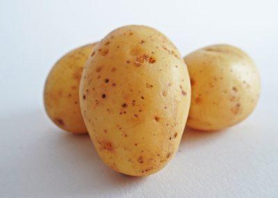 Patata dell'Alta Valle Belbo
